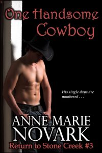 OneHandsome Cowboy2